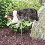 Border-Collie-Outdoor-Garden-Dog-Sign-Hand-Painted-Figure-Blue-Merle-400688297877