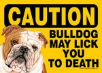 Bulldog-Caution-May-Lick-You-To-Death-Dog-Sign-Magnet-Velcro-5x7-181334099798