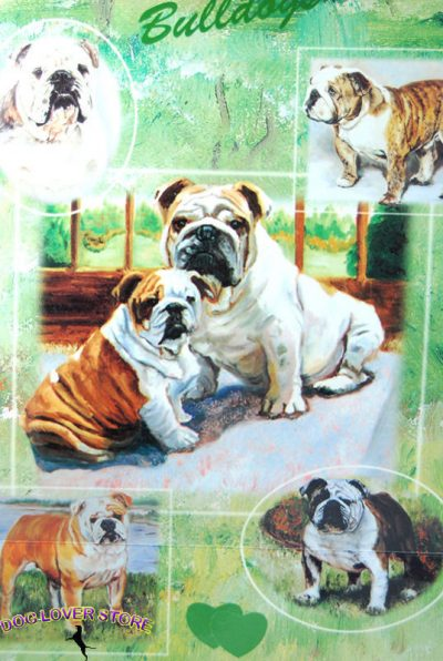 Bulldog-Dog-Gift-Present-Wrap-400341658788