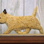 Cairn-Terrier-Dog-Figurine-Sign-Plaque-Display-Wall-Decoration-Wheaten-181430770540