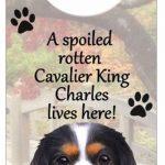 Cavalier-King-Charles-Dog-Door-Knob-Handle-Hanger-Sign-Spoiled-Rotten-1025-x-4-181160018268