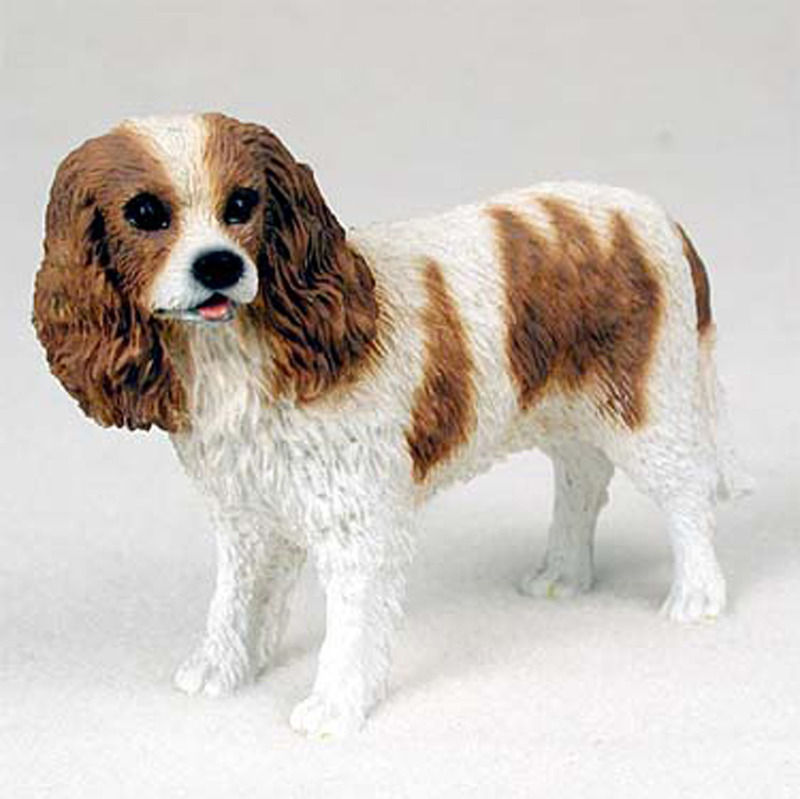 Brown And White Dog Cavalier King Charles ...