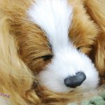 Cavalier-King-Charles-Life-Like-Stuffed-Animal-Breathing-Dog-Perfect-Petzzz-400652089275-2