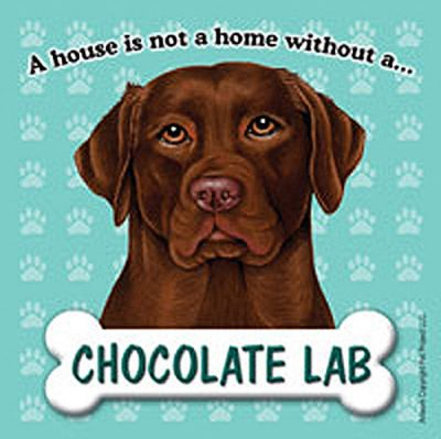 Chocolate-Lab-Dog-Magnet-Sign-House-Is-Not-A-Home-400669409576