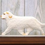 Clumber-Spaniel-Dog-Figurine-Sign-Plaque-Display-Wall-Decoration-Orange-400721989858