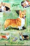 Corgi-Dog-Gift-Present-Wrap-400692874070