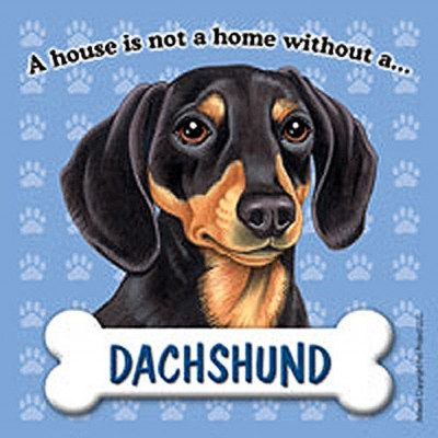 Dachshund-Dog-Magnet-Sign-House-Is-Not-A-Home-BlkBrn-180754172761