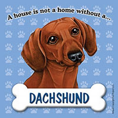 Dachshund-Dog-Magnet-Sign-House-Is-Not-A-Home-Red-400669410035