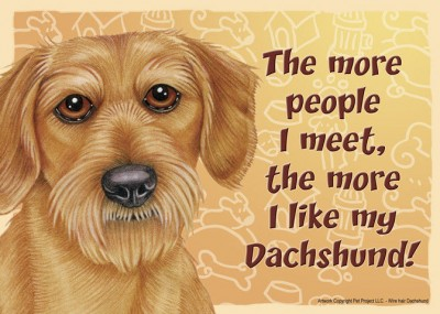 Dachshund-Dog-Sign-Wall-Plaque-Magnet-Velcro-5×7-More-People-I-Meet-Wire-Hair-400333778936