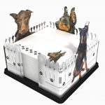 Doberman-Pinscher-Dog-Breed-Acrylic-Note-Holder-Memo-Note-Pad-Made-in-USA-181283418574