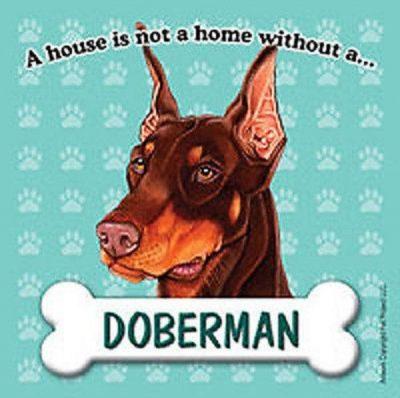 Doberman-Pinscher-Dog-Magnet-Sign-House-Is-Not-A-Home-400669410468
