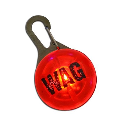Dog-Clip-On-Blinking-Collar-Night-Light-Walking-Hiking-Safety-Tag-400692913181-3