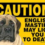 English-Mastiff-Caution-May-Lick-You-To-Death-Dog-Sign-Magnet-Velcro-5×7-181265227337