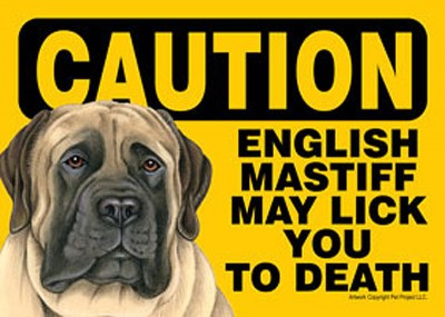 English-Mastiff-Caution-May-Lick-You-To-Death-Dog-Sign-Magnet-Velcro-5x7-181265227337