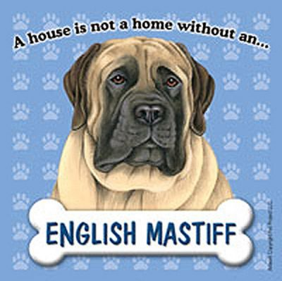 English-Mastiff-Dog-Magnet-Sign-House-Is-Not-A-Home-400395868509