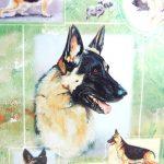 German-Shepherd-Dog-Gift-Present-Wrap-400341658802