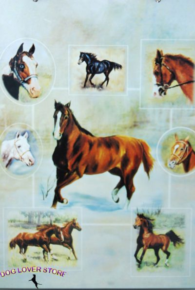 Horse-Gift-Wrap-Present-Wrapping-Paper-181379443516
