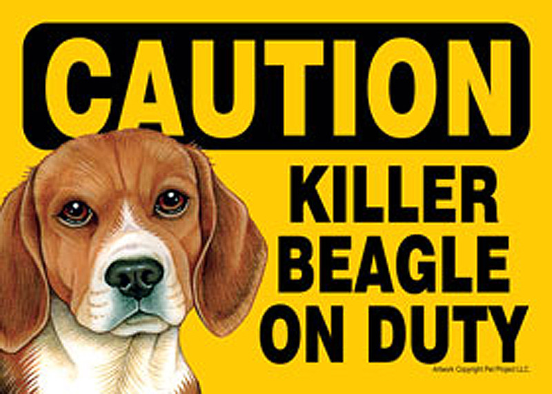 Killer Beagle On Duty Magnetic Sign 5x7