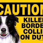 Killer-Border-Collie-On-Duty-Dog-Sign-Magnet-Velcro-5×7-181140169895