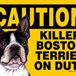 Killer-Boston-Terrier-On-Duty-Dog-Sign-Magnet-Velcro-5×7-181334104381