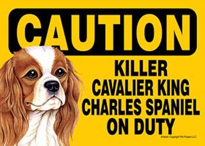Killer-Cavalier-King-Charles-On-Duty-Dog-Sign-Magnet-Velcro-5×7-400487964636