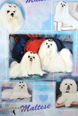 Maltese-Dog-Gift-Present-Wrap-181027073719