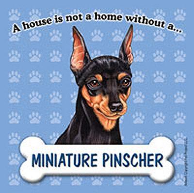 Miniature-Pinscher-Dog-Magnet-Sign-House-Is-Not-A-Home-180714370440