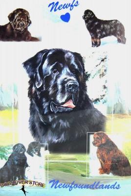 Newfoundland-Dog-Gift-Present-Wrap-181027073725