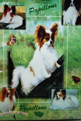 Papillon-Dog-Gift-Present-Wrap-181027073732