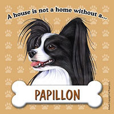 Papillon-Dog-Magnet-Sign-House-Is-Not-A-Home-BlkWht-181281420091