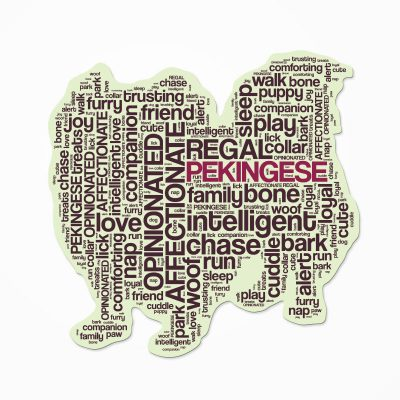 Pekingese-Dog-Breed-Cutout-Vinyl-Decal-Bumper-Sticker-Characteristic-Silhouette-400570917526