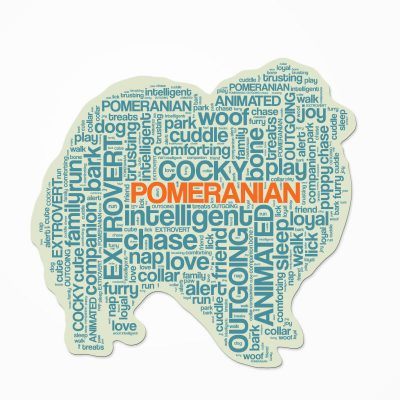 Pomeranian-Dog-Breed-Cutout-Vinyl-Decal-Bumper-Sticker-Characteristic-Silhouette-400570918192