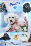 Poodle-Dog-Gift-Present-Wrap-181027073758
