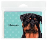 Rottweiler-Dog-Note-Cards-Set-of-8-with-Envelopes-400694672755