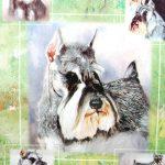 Schnauzer-Dog-Gift-Present-Wrap-181027073786