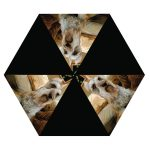 Schnauzer-Outdoor-Folding-Dog-Breed-Umbrella-w-Sleeve-180847685903