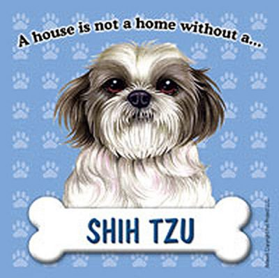 Shih-Tzu-Dog-Magnet-Sign-House-Is-Not-A-Home-Pup-181281421793