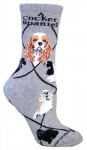 Spaniels-Dog-Breed-CottonNylon-Womens-Socks-Size-6-9-180629362613