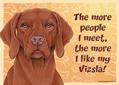 Vizsla-Dog-Sign-Wall-Plaque-Magnet-Velcro-5x7-More-People-I-Meet-181067632556