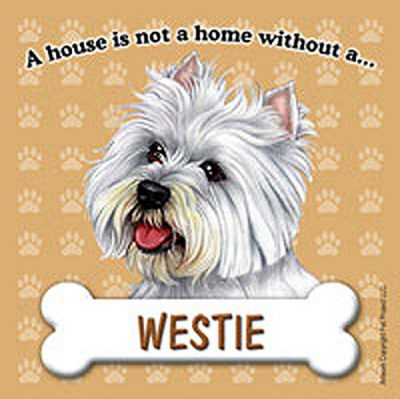 Westie-Dog-Magnet-Sign-House-Is-Not-A-Home-180783769167