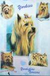 Yorkie-Dog-Gift-Present-Wrap-400409169063