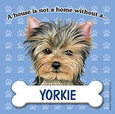 Yorkie-Dog-Magnet-Sign-House-Is-Not-A-Home-400362018668