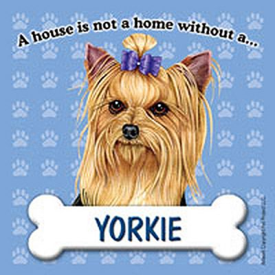 Yorkie-Dog-Magnet-Sign-House-Is-Not-A-Home-Bow-180754172986