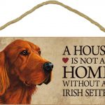 irish-setter-house-is-not-a-home-sign
