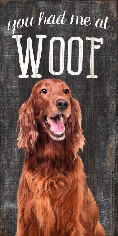 Irish Setter Sign – You Had me at WOOF 5×10 1