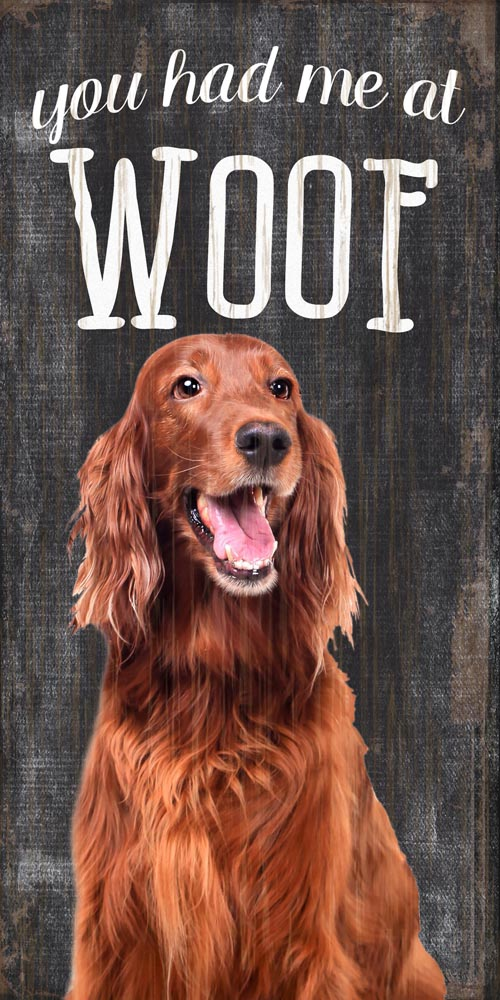 Irish Setter Sign - You Had me at WOOF 5x10