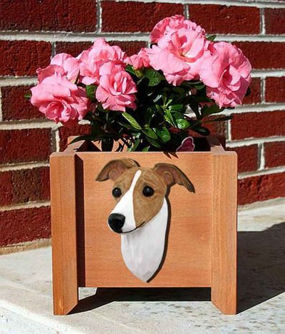 Italian Greyhound Planter Flower Pot Fawn White 1
