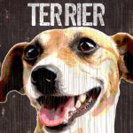 Jack Russell Terrier Sign – I Love My 5×10 1