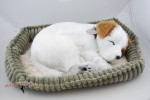 Jack Russell Life Like Stuffed Animal Breathing Dog Perfect Petzzz