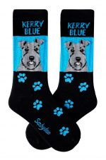 Kerry Blue Terrier Socks on Blue Background